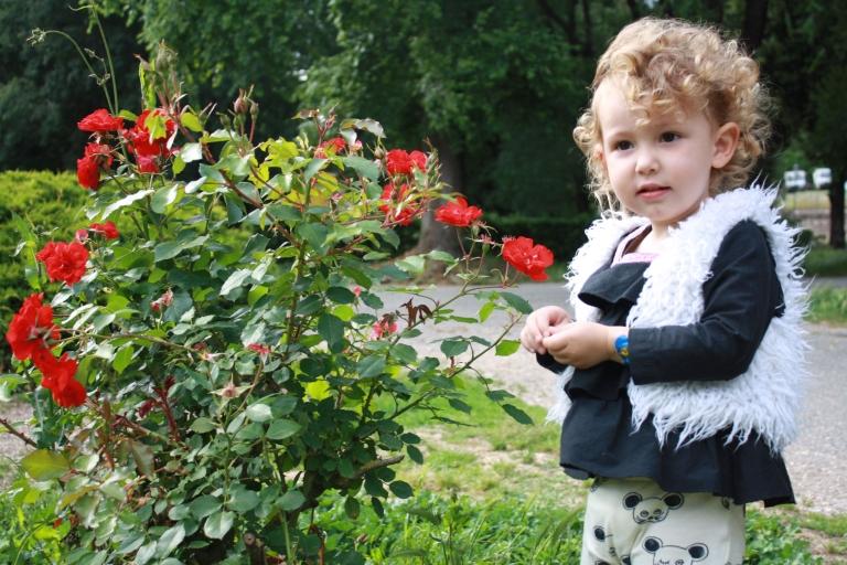 fleurs villa borghese
