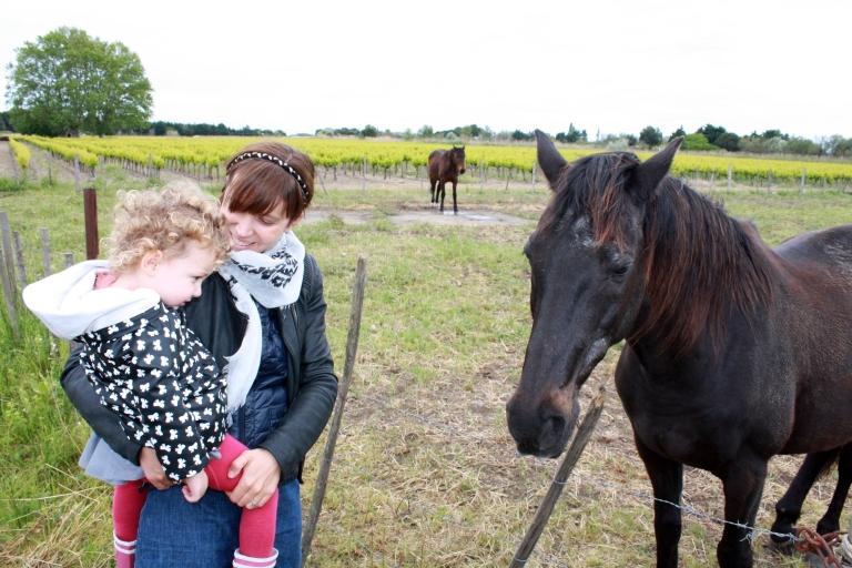 violette et le cheval